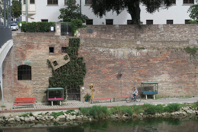 Falling Plant Wall